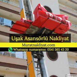 Uşak Asansörlü Taşıma